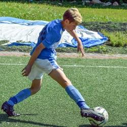 Кожаный мяч Московской области_11