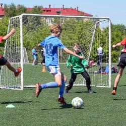 Кожаный мяч Московской области_7